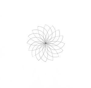Twirling blank 2